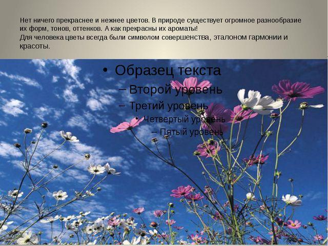 Нет ничего прекраснее и нежнее цветов. В природе существует огромное разнообр...