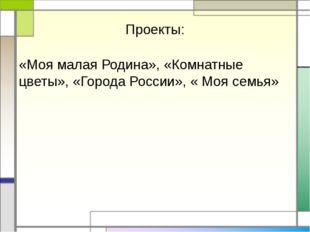 Проекты: «Моя малая Родина», «Комнатные цветы», «Города России», « Моя семья»