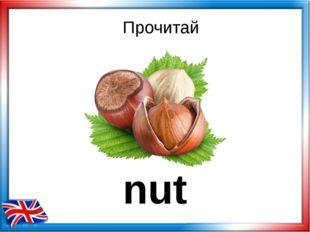 Прочитай nut