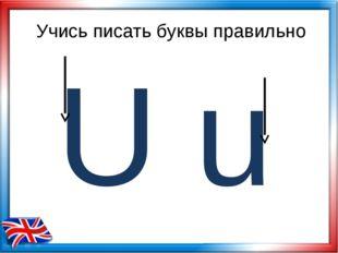 U Учись писать буквы правильно u
