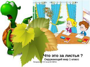 Писаревская Т.П. Баган БСОШ№1 Что это за листья ? Окружающий мир 1 класс Писа