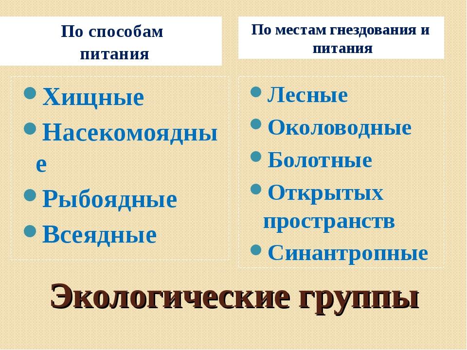 Экологические группы По способам питания По местам гнездования и питания Хищн...