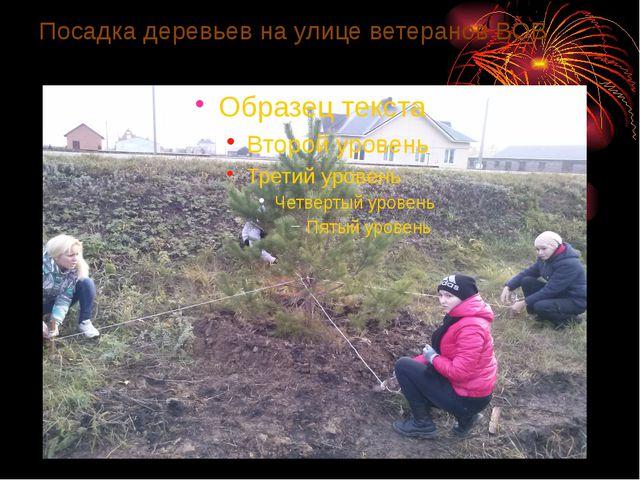 Посадка деревьев на улице ветеранов ВОВ