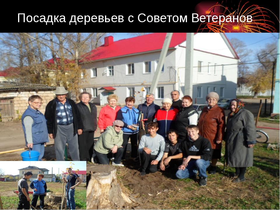 Посадка деревьев с Советом Ветеранов