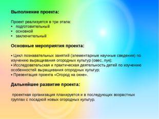 Выполнение проекта: Проект реализуется в три этапа: подготовительный основной