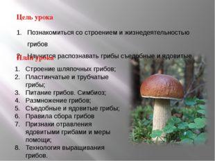Познакомиться со строением и жизнедеятельностью грибов Научится распознавать