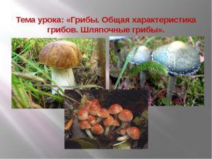 Тема урока: «Грибы. Общая характеристика грибов. Шляпочные грибы».