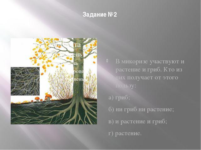 Задание №2 В микоризе участвуют и растение и гриб. Кто из них получает от это...