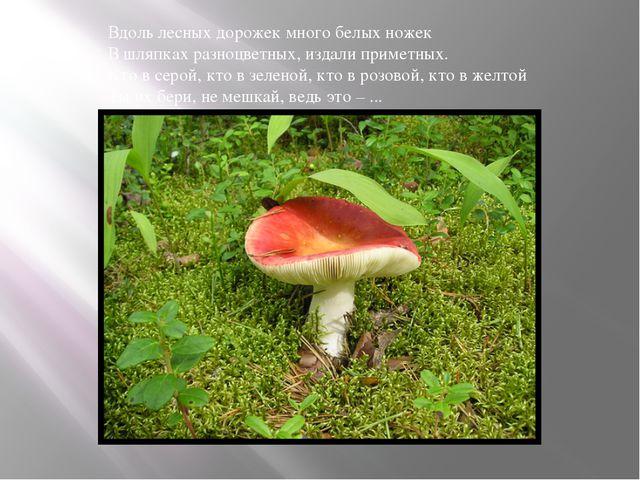 Вдоль лесных дорожек много белых ножек В шляпках разноцветных, издали примет...