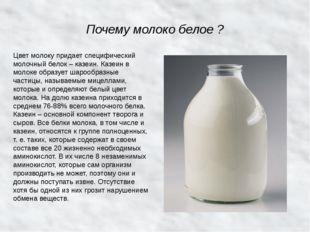 Почему молоко белое ? Цвет молоку придает специфический молочный белок – казе