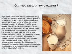 От чего зависит вкус молока ? Вкус коровьего молока зависит в первую очередь