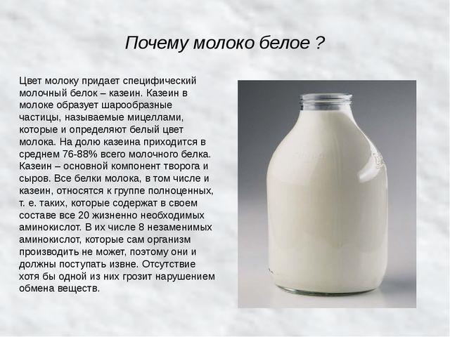 Почему молоко белое ? Цвет молоку придает специфический молочный белок – казе...