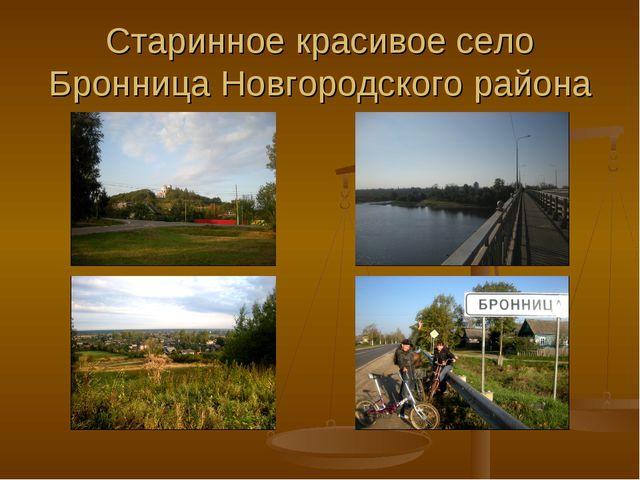 Старинное красивое село Бронница Новгородского района