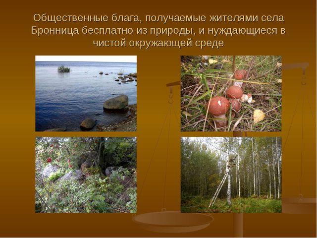Общественные блага, получаемые жителями села Бронница бесплатно из природы, и...