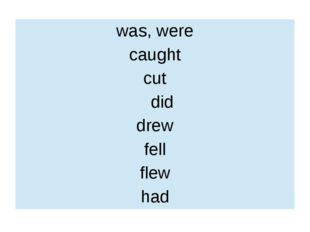 was, were caught cut did drew fell flew had
