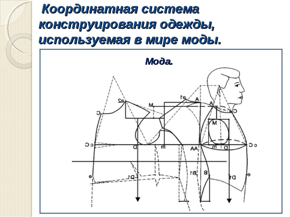 Координатная система конструирования одежды, используемая в мире моды. Мода.