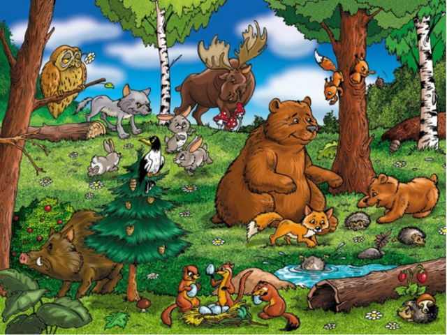 Картинка лес с дикими животными