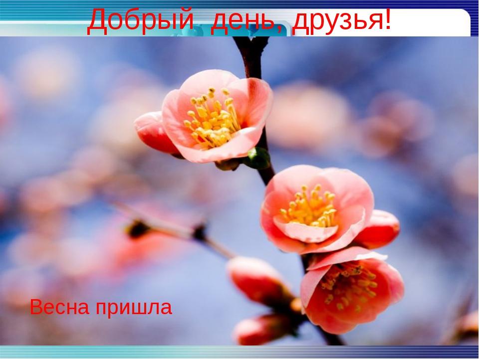 Добрый день, друзья! Весна пришла