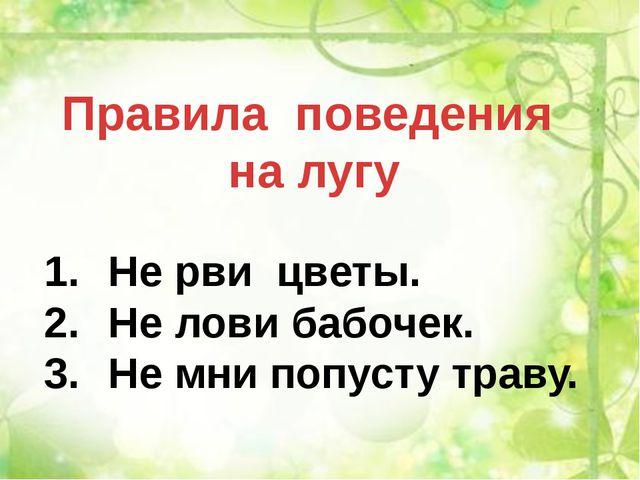 Правила поведения на лугу Не рви цветы. Не лови бабочек. Не мни попусту траву.