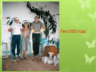 Лето 2003 года