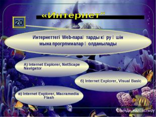 в) Internet Explorer, Macramedia Flash б) Internet Explorer, Visual Basic А)