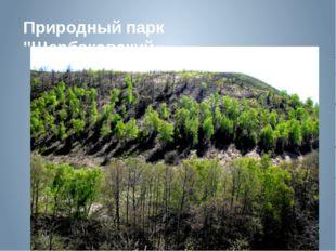 """Природный парк """"Щербаковский«"""