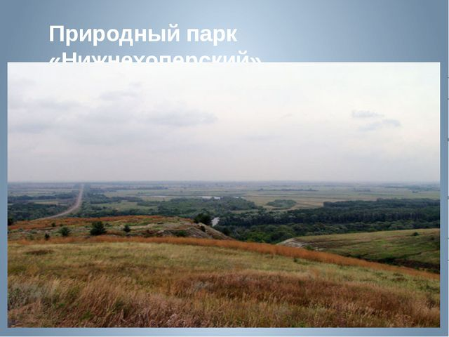Природный парк «Нижнехоперский»