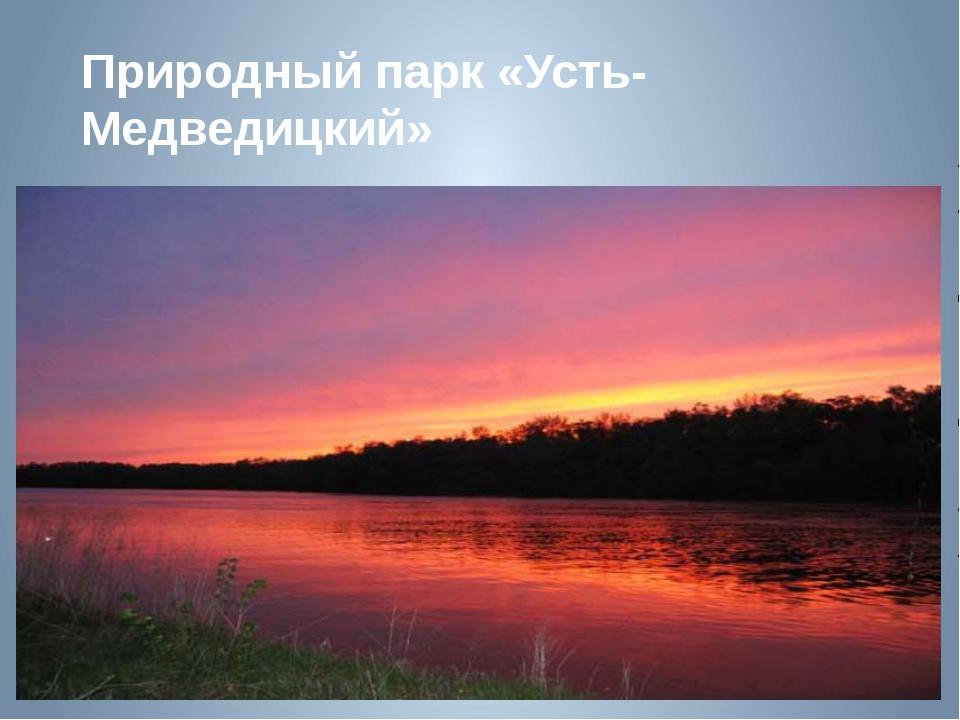Природный парк «Усть-Медведицкий»