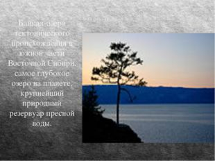 Озеро Байкал Байкал-озеро тектонического происхождения в южной части Восточно