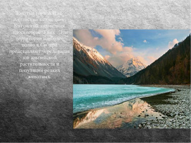 Золотые горы Алтая Золотые горы Алтая-Алтайский заповедник, Катунский заповед...