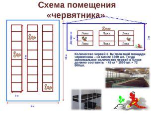 Схема помещения «червятника» Количество червей в 1м 2 полезной площади червя
