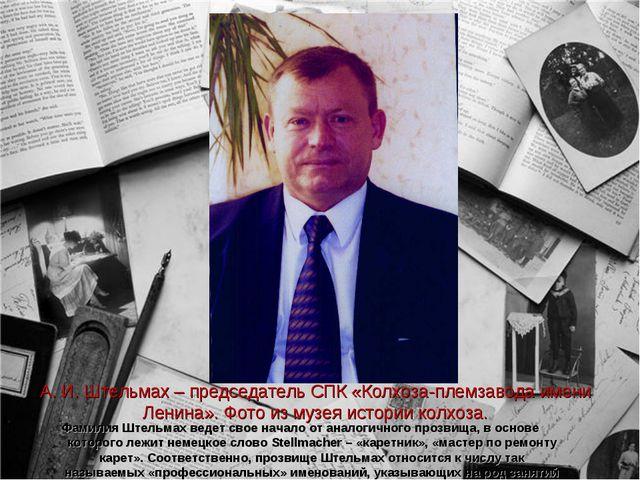 А. И. Штельмах – председатель СПК «Колхоза-племзавода имени Ленина». Фото из...