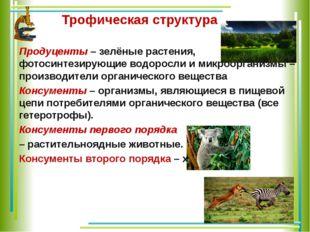 Трофическая структура Продуценты – зелёные растения, фотосинтезирующие водор