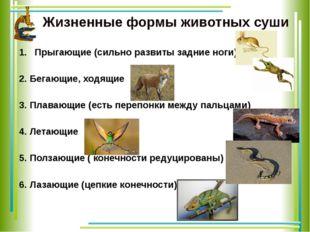 Жизненные формы животных суши Прыгающие (сильно развиты задние ноги) 2. Бега