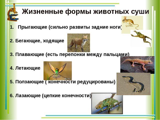 Жизненные формы животных суши Прыгающие (сильно развиты задние ноги) 2. Бега...