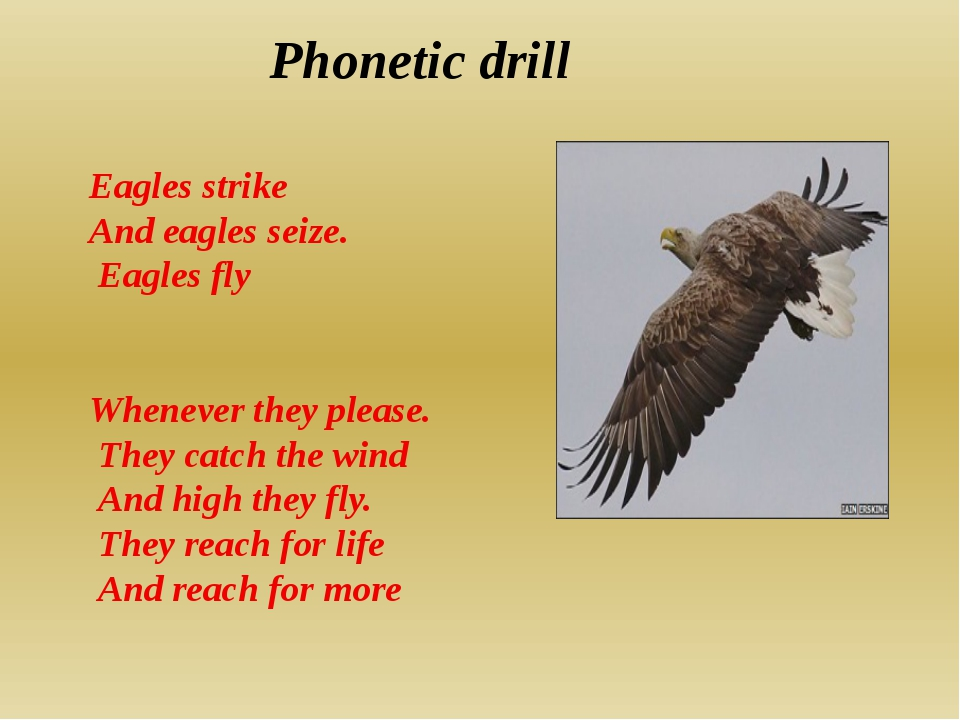 Phonetic drill Eagles strike And eagles seize. Eagles fly Whenever they pleas...