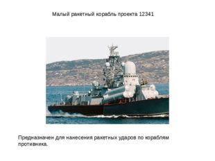 Малый ракетный корабль проекта 12341 Предназначен для нанесения ракетных удар