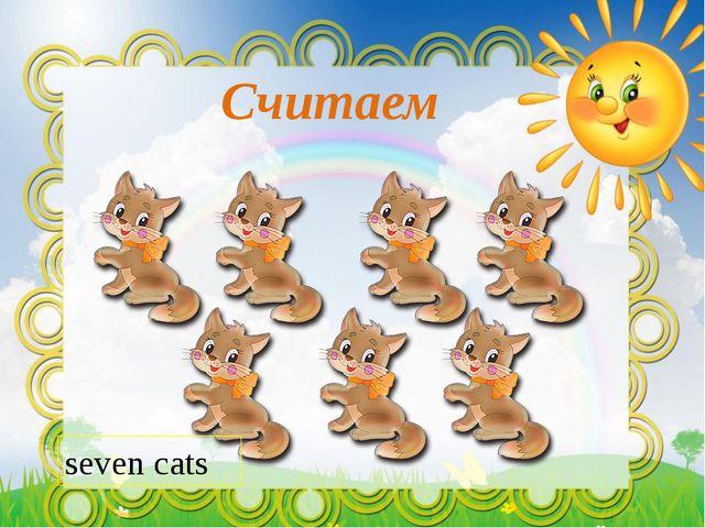 Считаем seven cats