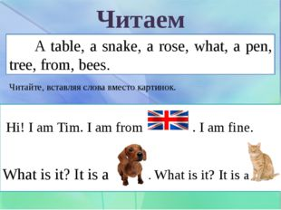 Читаем A table, a snake, a rose, what, a pen, tree, from, bees. Читайте, вста