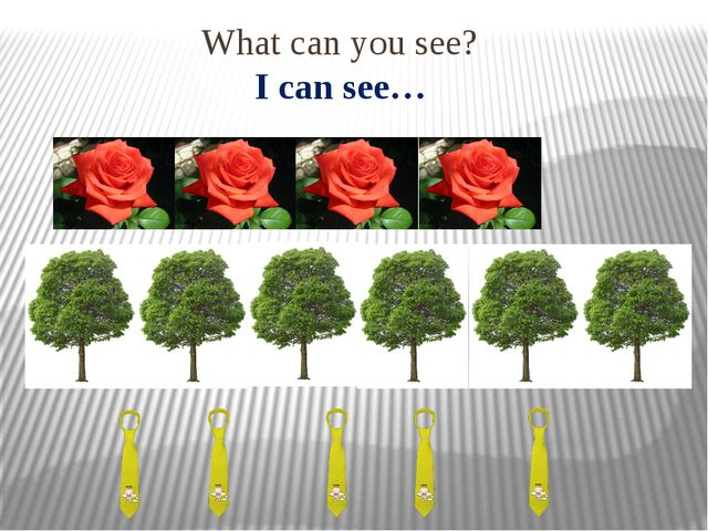 What can you see? I can see…
