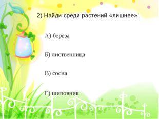 4) Укажи, какое полезное ископаемое используется для производства кирпичей. А