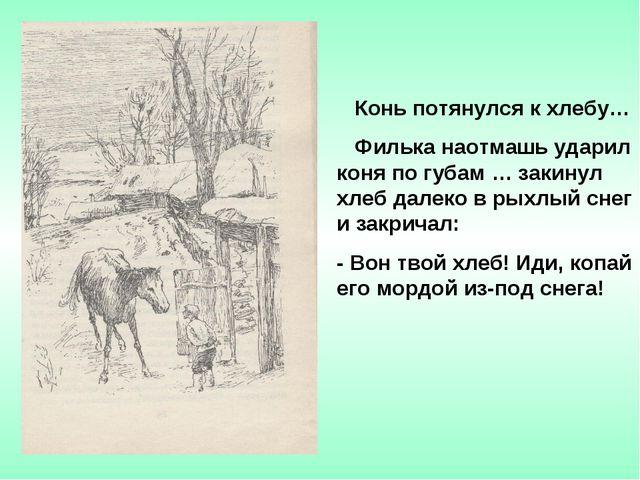Конь потянулся к хлебу… Филька наотмашь ударил коня по губам … закинул хлеб...