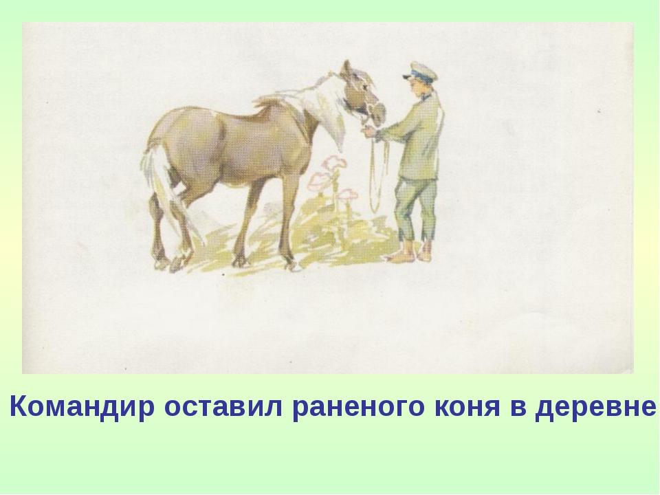 Командир оставил раненого коня в деревне.