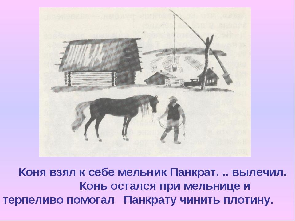 Коня взял к себе мельник Панкрат. .. вылечил. Конь остался при мельнице и те...