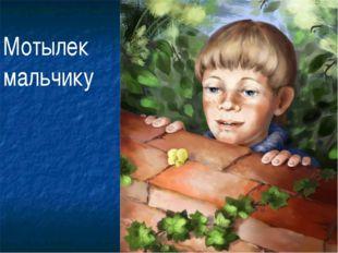 Мотылек мальчику