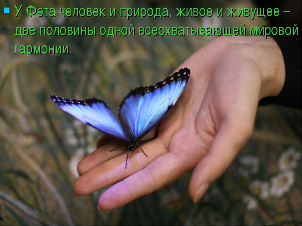 У Фета человек и природа, живое и живущее – две половины одной всеохватывающе...