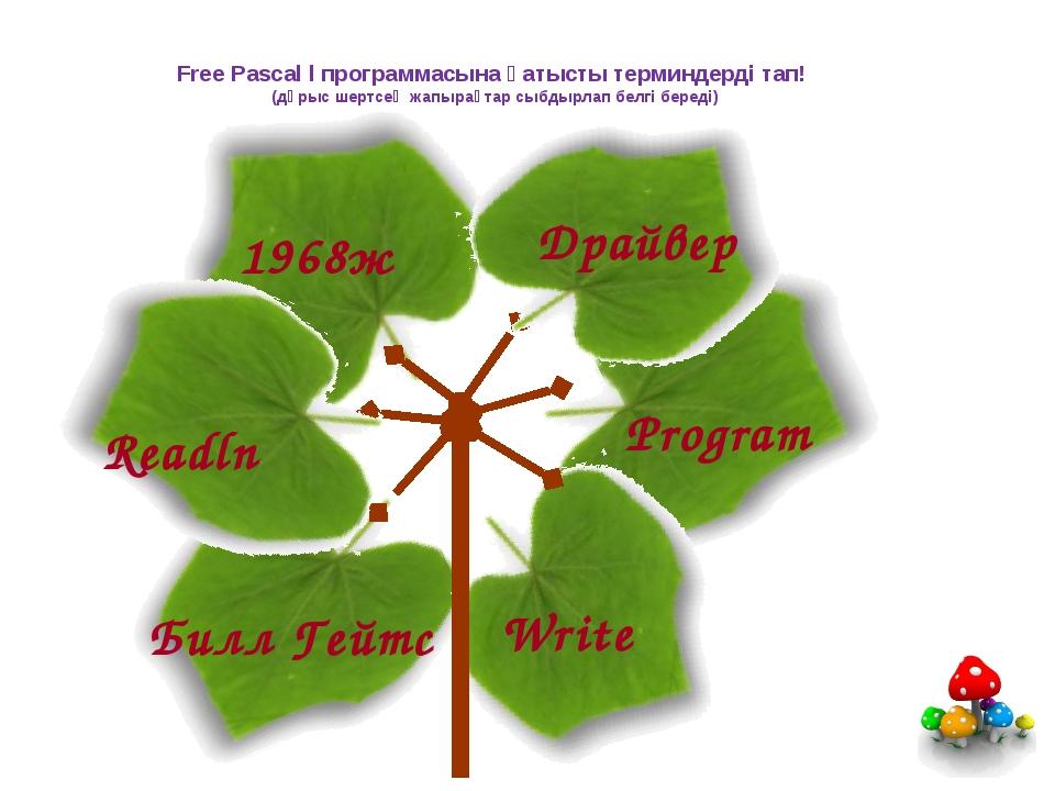 Free Pascal l программасына қатысты терминдерді тап! (дұрыс шертсең жапырақта...