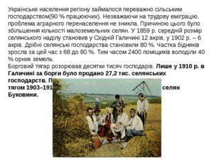 Українське населення регіону займалося переважно сільським господарством(90 %