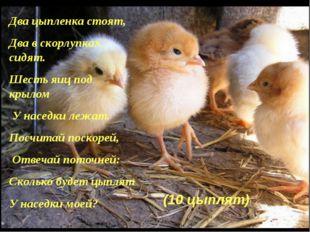 Два цыпленка стоят, Два в скорлупках сидят. Шесть яиц под крылом У наседки ле