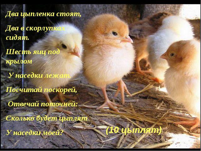 Два цыпленка стоят, Два в скорлупках сидят. Шесть яиц под крылом У наседки ле...